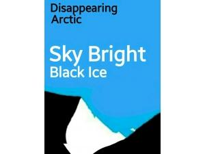 PosterArt/ Sky Bright, Black Ice